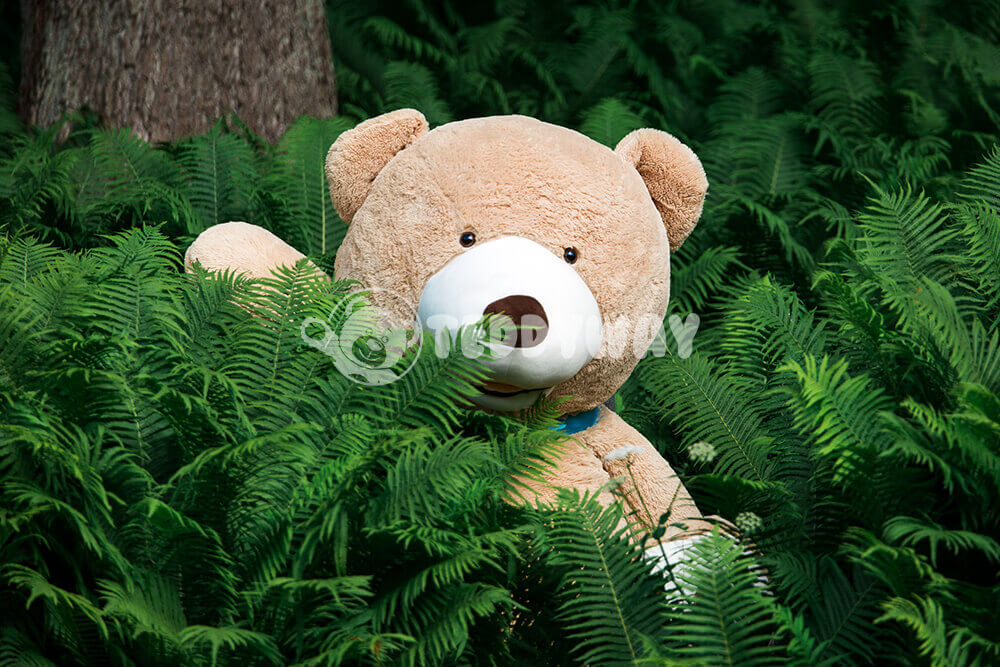 Gigantische Teddybeer in wildernis - TeddyWay